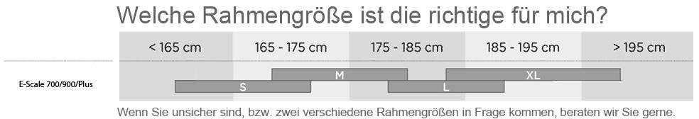 Die richtige Größe für das E-Contessa Scale 720 Plus